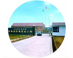 في عام 1991، تأسس المصنع السابق لمجموعة بينغله -- مصنع تجديد مطحنة الدقيق لمحافظة تشنغدينغ