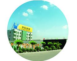 في عام 2003، تأسست شركة مجموعة خبي بينغله