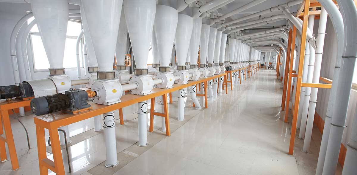 طاجيكستان 600TPD مصنع طحن القمح
