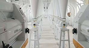 الصين 350TPD مصنع طحن القمح